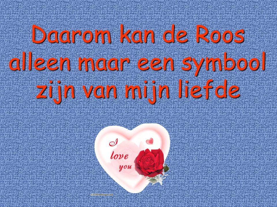 Daarom kan de Roos alleen maar een symbool zijn van mijn liefde