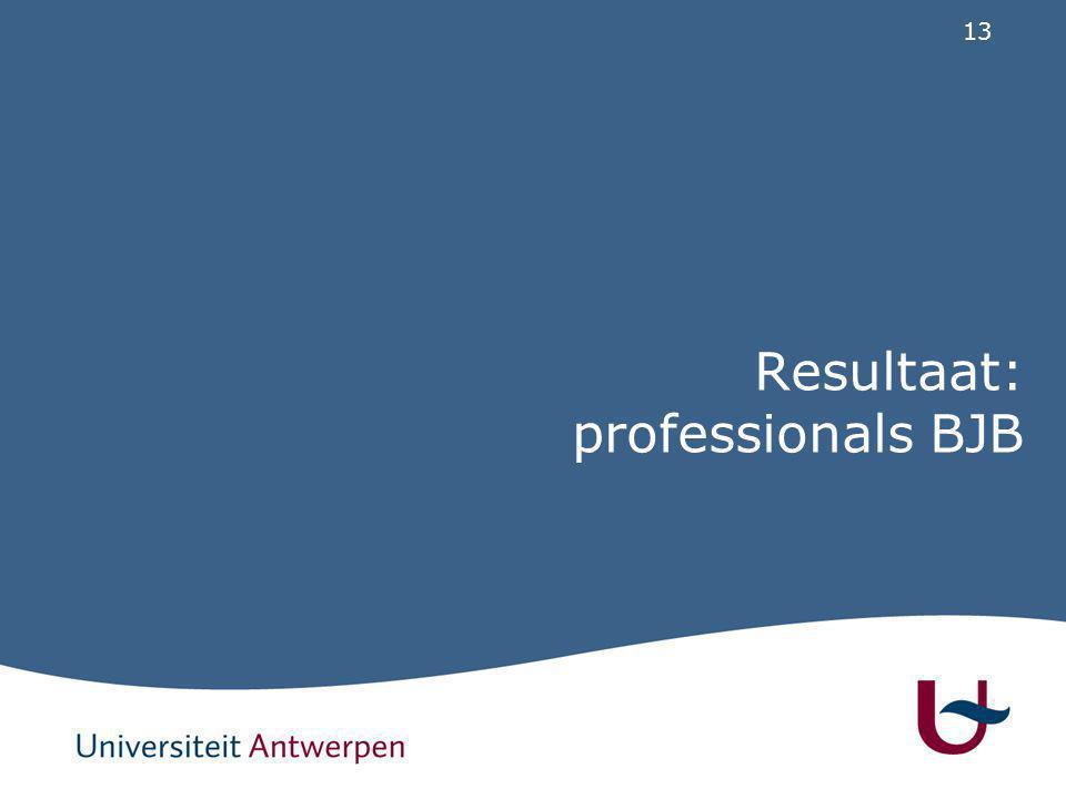 13 Resultaat: professionals BJB