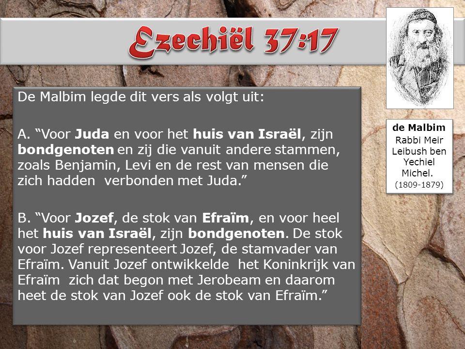 """De Malbim legde dit vers als volgt uit: A. """"Voor Juda en voor het huis van Israël, zijn bondgenoten en zij die vanuit andere stammen, zoals Benjamin,"""