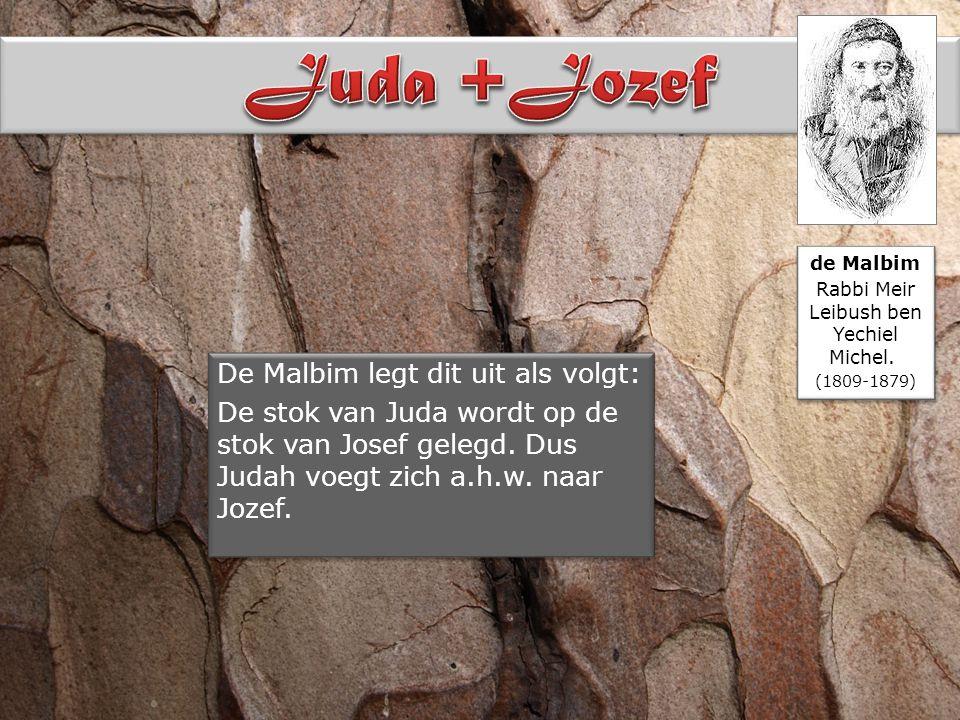 De Malbim legt dit uit als volgt: De stok van Juda wordt op de stok van Josef gelegd.
