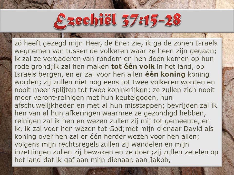 waarop uw vaderen gezeteld hebben; zetelen zullen daarop zij en hun zonen, en de zonen van hun zonen tot in eeuwigheid, met mijn dienaar David als verhevene over hen voor eeuwig; smeden zal ik voor hen een verbond van vrede, een eeuwig verbond zal het met hen wezen; zegenen zal ik hen en hen talrijk maken, geven zal ik mijn heiliging in hun midden voor eeuwig;boven hen zal mijn inwoning wezen en wezen zal ik hun tot God; zij zullen mij wezen tot gemeente;weten zullen de volkeren dat ik de Ene het ben die Israël heiligt,- doordat mijn heiliging in hun midden zal wezen voor eeuwig!