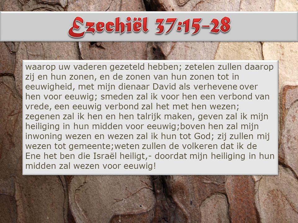 Johannes 1: 1 In den beginne was het Woord en het Woord was bij God en het Woord was God.