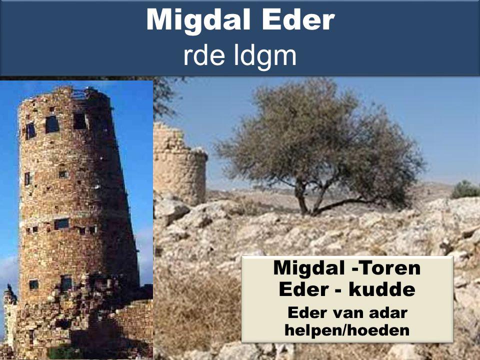 Migdal -Toren Eder - kudde Eder van adar helpen/hoeden Migdal -Toren Eder - kudde Eder van adar helpen/hoeden Migdal Eder rde ldgm