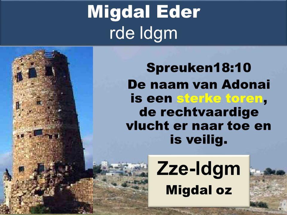 Spreuken18:10 De naam van Adonai is een sterke toren, de rechtvaardige vlucht er naar toe en is veilig.
