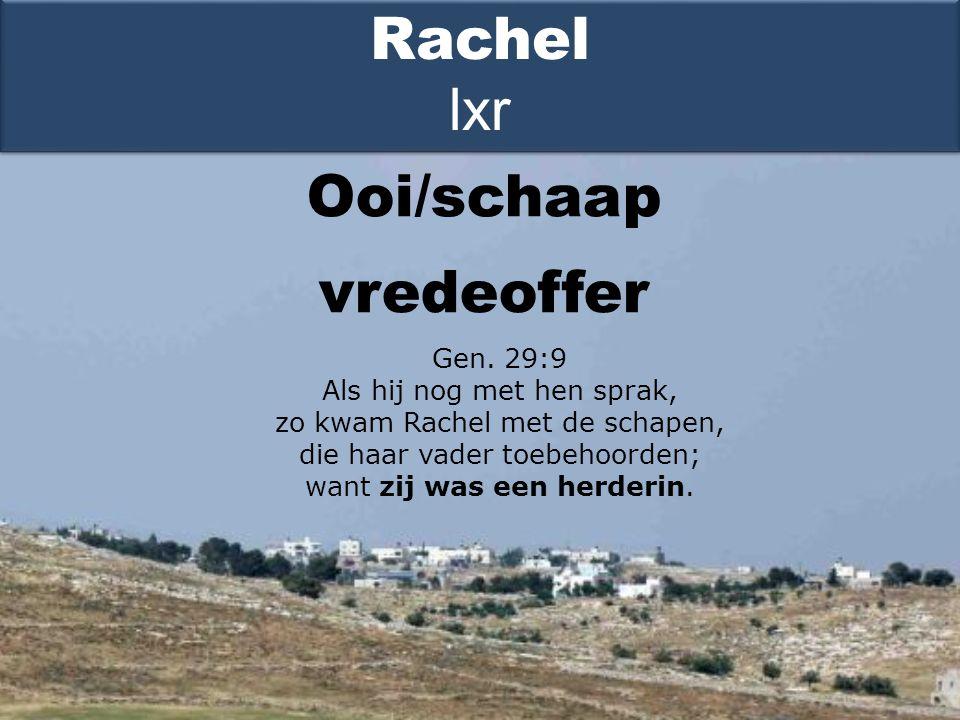 Ooi/schaap Rachel lxr Gen.