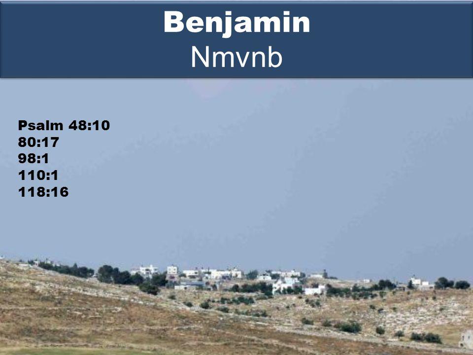 Psalm 48:10 80:17 98:1 110:1 118:16 Benjamin Nmvnb