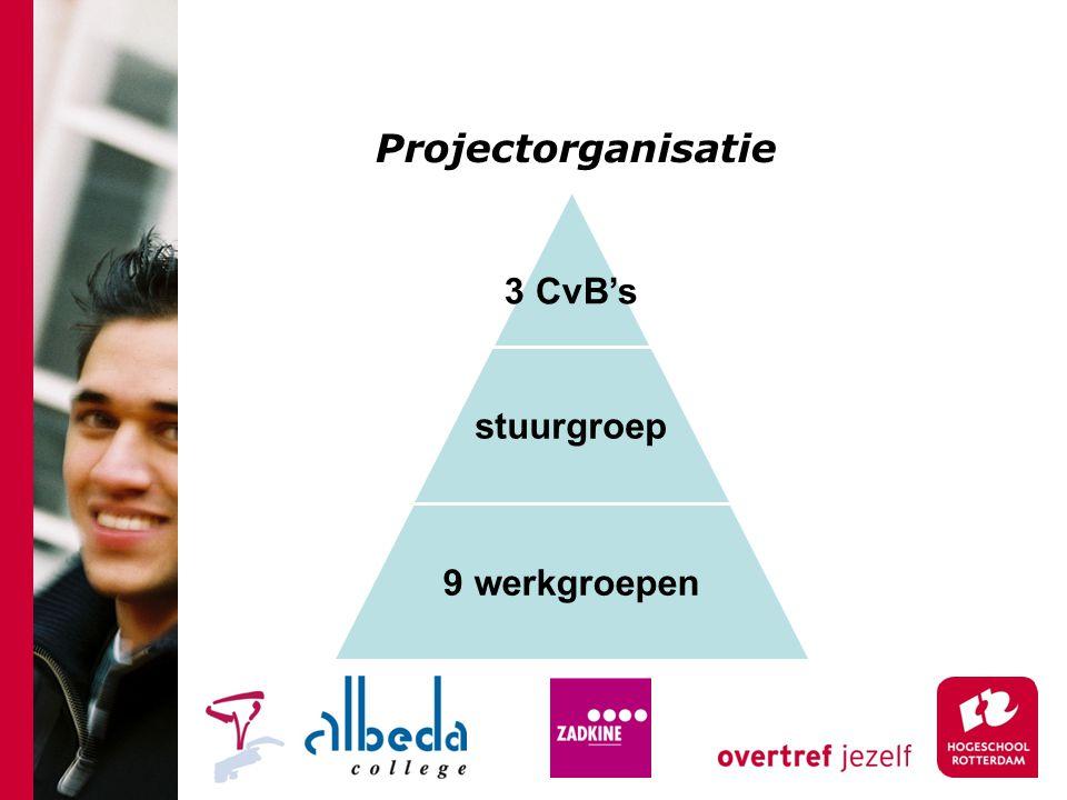 Projectorganisatie 3 CvB's stuurgroep 9 werkgroepen