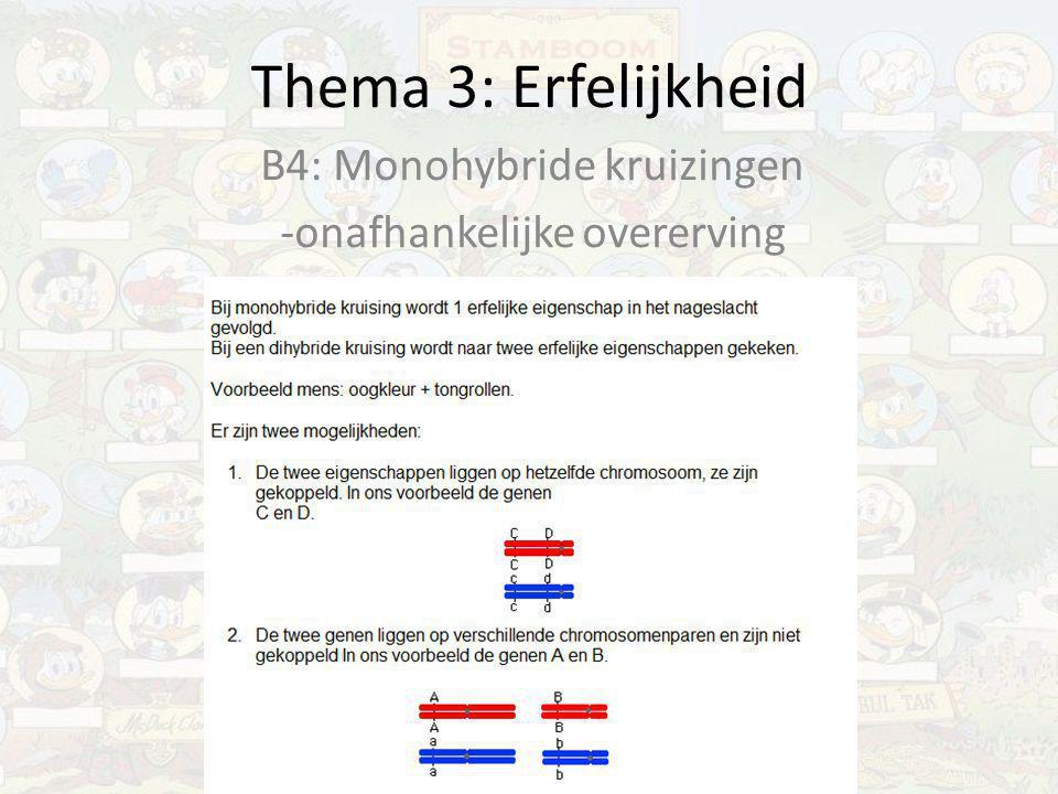 Thema 3: Erfelijkheid B4: Monohybride kruizingen -onafhankelijke overerving