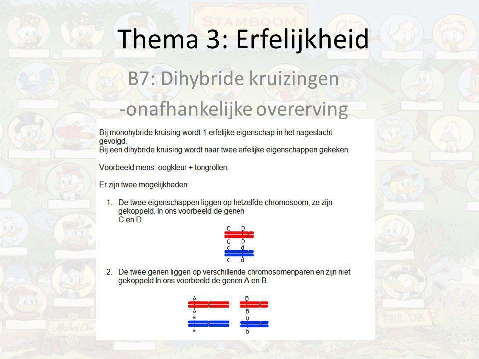 Thema 3: Erfelijkheid B7: Dihybride kruizingen -onafhankelijke overerving