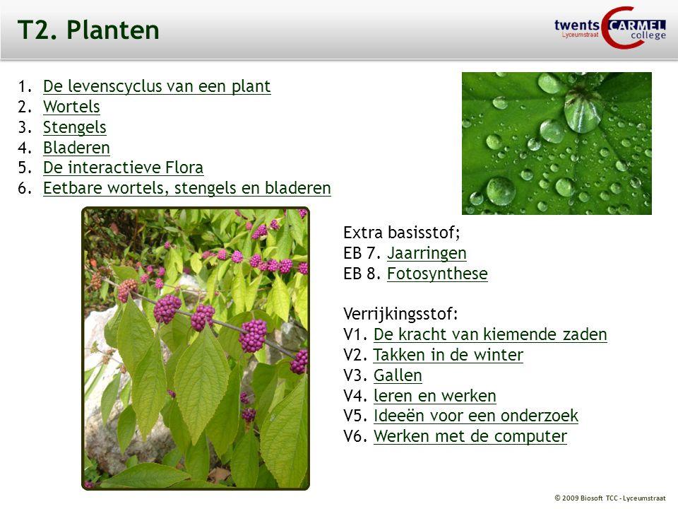 © 2009 Biosoft TCC - Lyceumstraat V3. Gallen. Gallen. De galmug