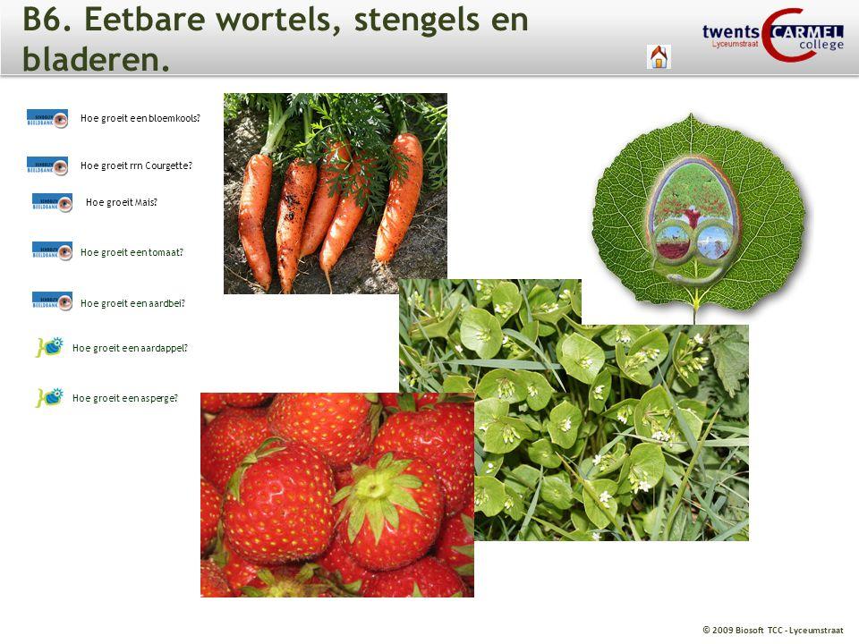 © 2009 Biosoft TCC - Lyceumstraat B6.Eetbare wortels, stengels en bladeren.