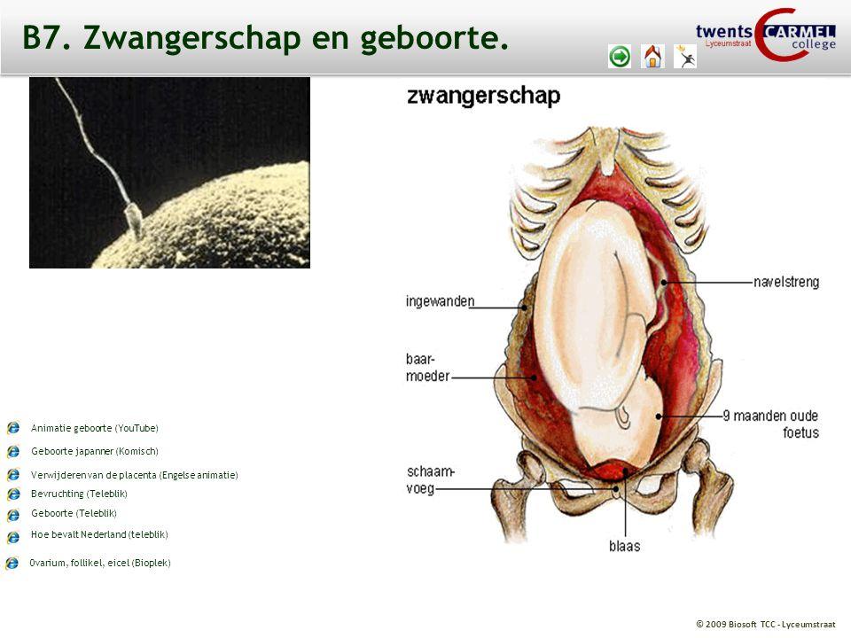© 2009 Biosoft TCC - Lyceumstraat B7. Zwangerschap en geboorte. Ovarium, follikel, eicel (Bioplek) Bevruchting (Teleblik) Geboorte (Teleblik) Hoe beva