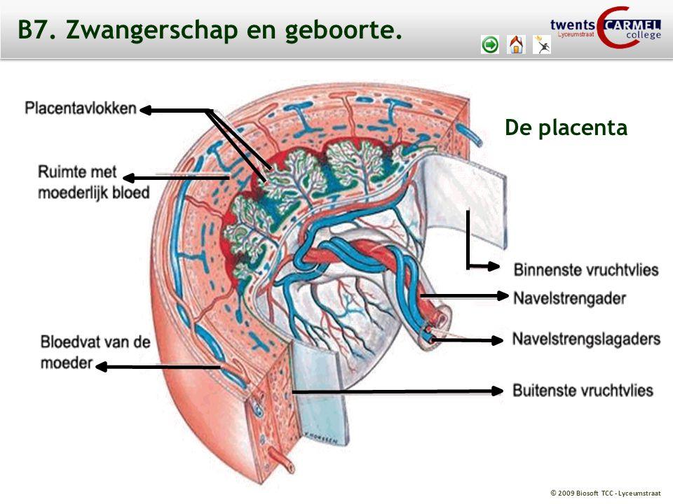 © 2009 Biosoft TCC - Lyceumstraat B7. Zwangerschap en geboorte. De placenta