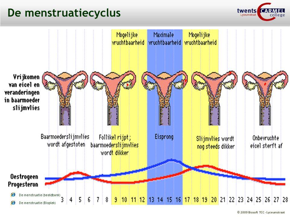 © 2009 Biosoft TCC - Lyceumstraat De menstruatiecyclus De menstruatie (beeldbank) De menstruatie (Bioplek)