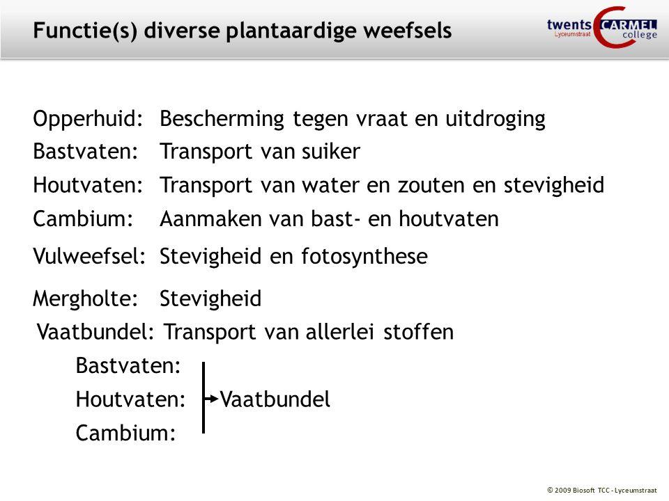 © 2009 Biosoft TCC - Lyceumstraat Functie(s) diverse plantaardige weefsels Opperhuid:Bescherming tegen vraat en uitdroging Bastvaten:Transport van sui