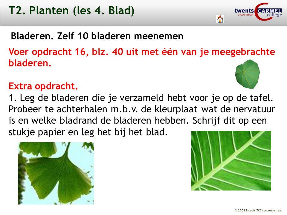 © 2009 Biosoft TCC - Lyceumstraat T2. Planten (les 4. Blad) Bladeren. Zelf 10 bladeren meenemen Voer opdracht 16, blz. 40 uit met één van je meegebrac