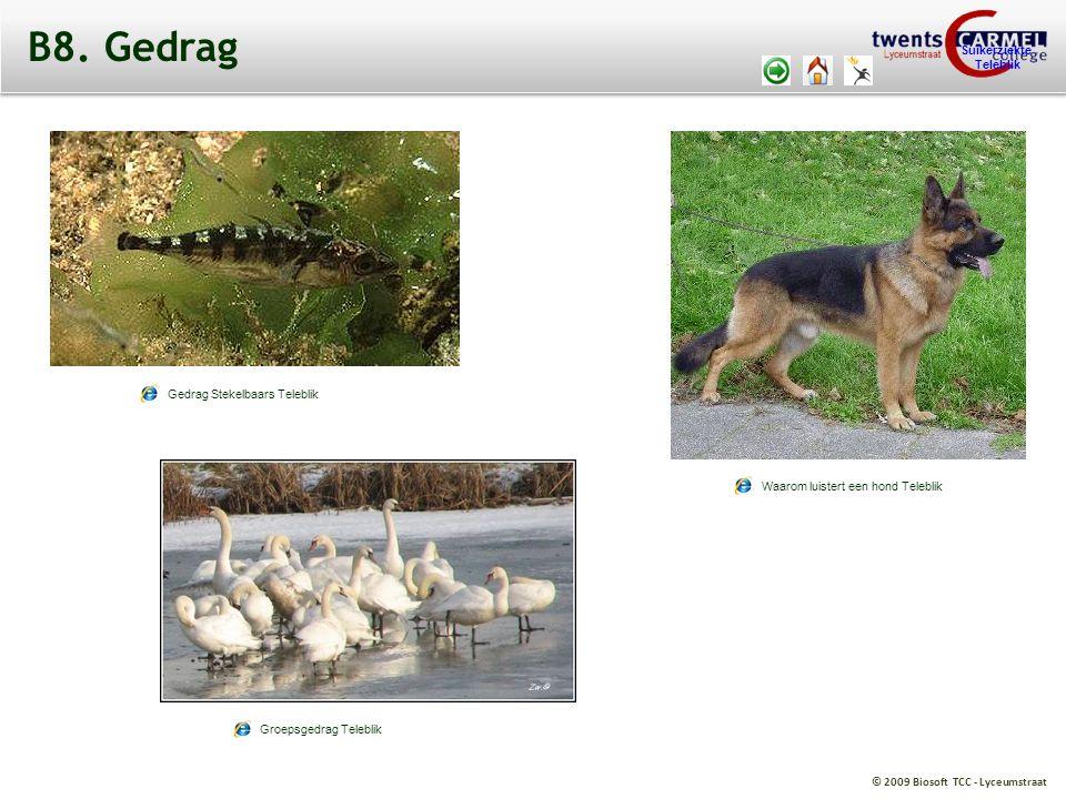 © 2009 Biosoft TCC - Lyceumstraat Suikerziekte Teleblik B8. Gedrag Waarom luistert een hond Teleblik Gedrag Stekelbaars Teleblik Groepsgedrag Teleblik