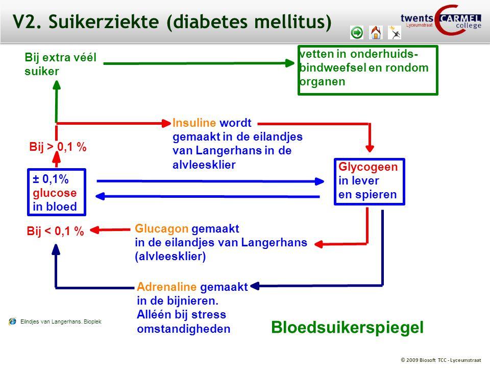 © 2009 Biosoft TCC - Lyceumstraat Bloedsuikerspiegel Bij extra véél suiker vetten in onderhuids- bindweefsel en rondom organen Bij > 0,1 % Bij < 0,1 %