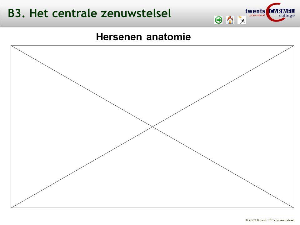 © 2009 Biosoft TCC - Lyceumstraat Hersenen anatomie B3. Het centrale zenuwstelsel