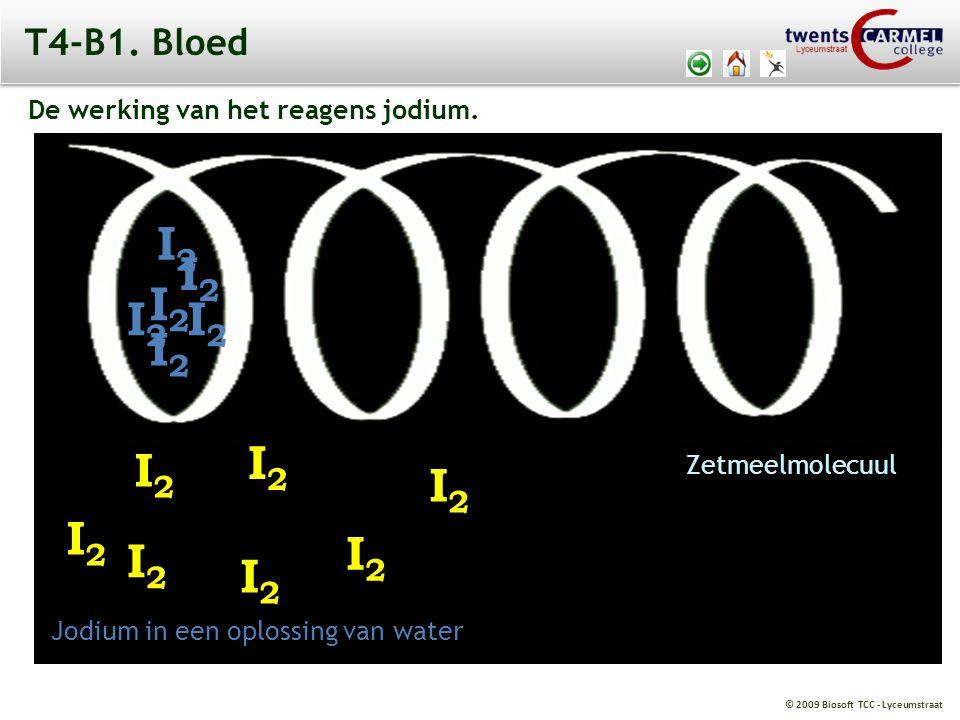 © 2009 Biosoft TCC - Lyceumstraat T4-B1. Bloed De werking van het reagens jodium. I2I2 I2I2 I2I2 I2I2 I2I2 I2I2 I2I2 Jodium in een oplossing van water