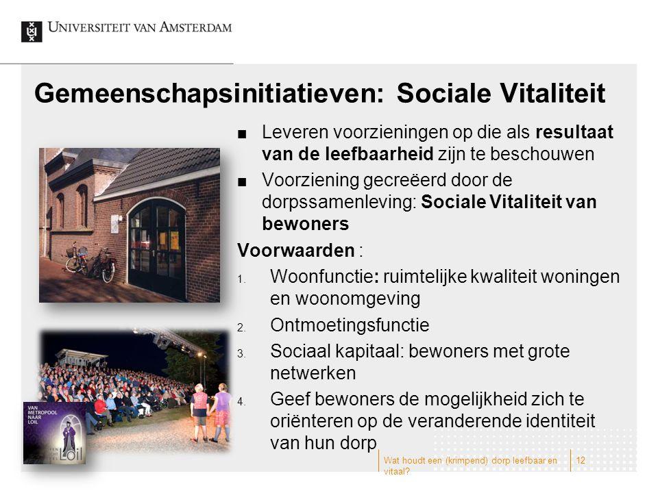 Gemeenschapsinitiatieven: Sociale Vitaliteit Leveren voorzieningen op die als resultaat van de leefbaarheid zijn te beschouwen Voorziening gecreëerd d