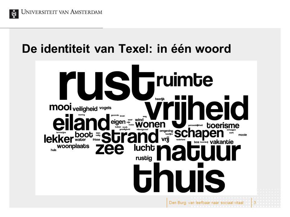 De identiteit van Texel: in één woord Den Burg: van leefbaar naar sociaal vitaal3