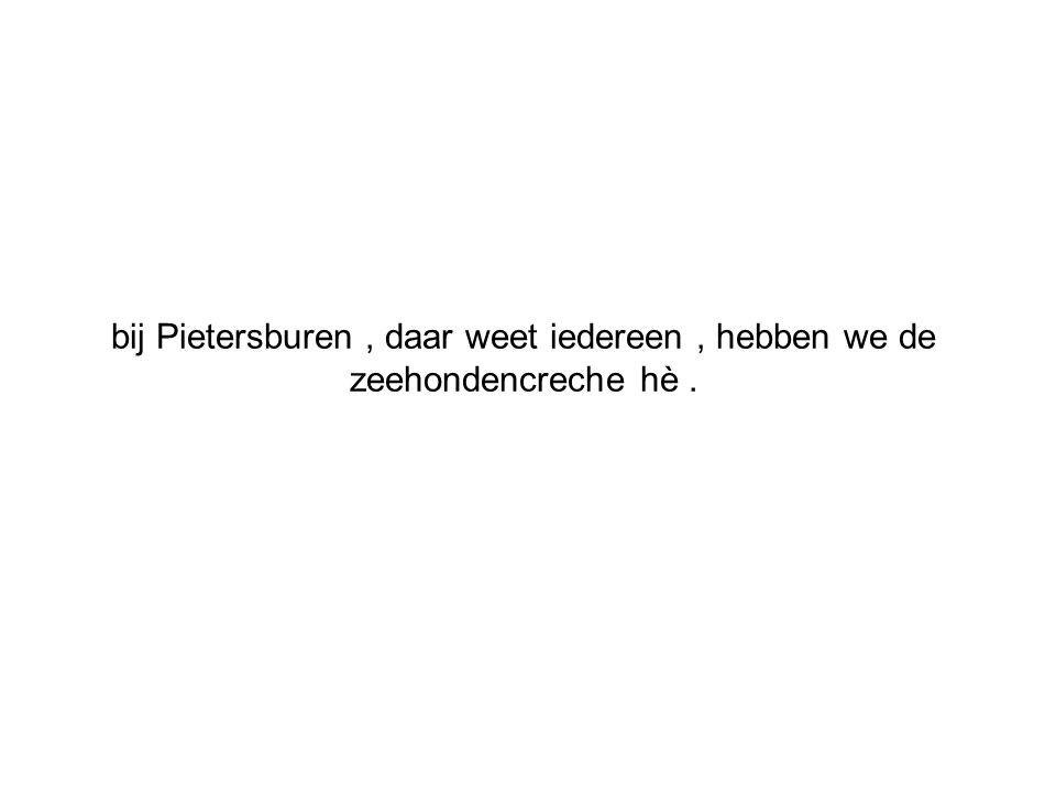 bij Pietersburen, daar weet iedereen, hebben we de zeehondencreche hè.