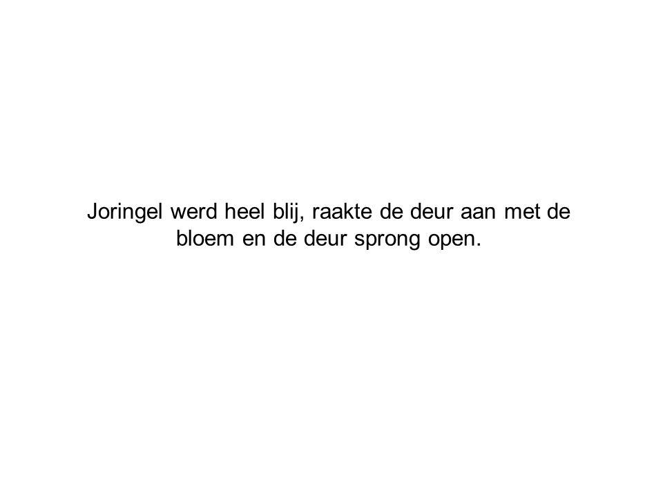 Joringel werd heel blij, raakte de deur aan met de bloem en de deur sprong open.