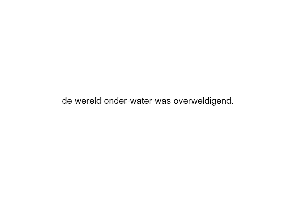 de wereld onder water was overweldigend.