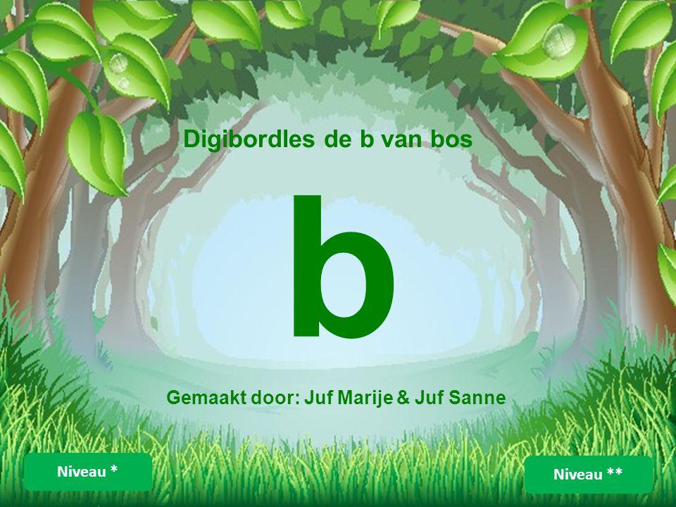 b Digibordles de b van bos Gemaakt door: Juf Marije & Juf Sanne Niveau ** Niveau *