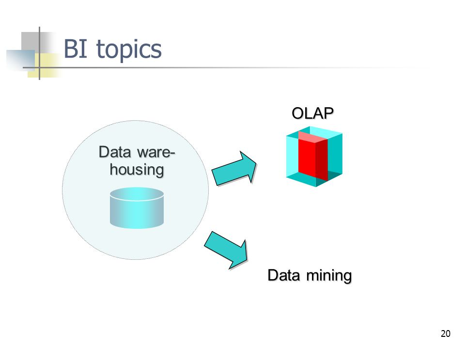 20 BI topicsOLAP Data ware- housing Data mining