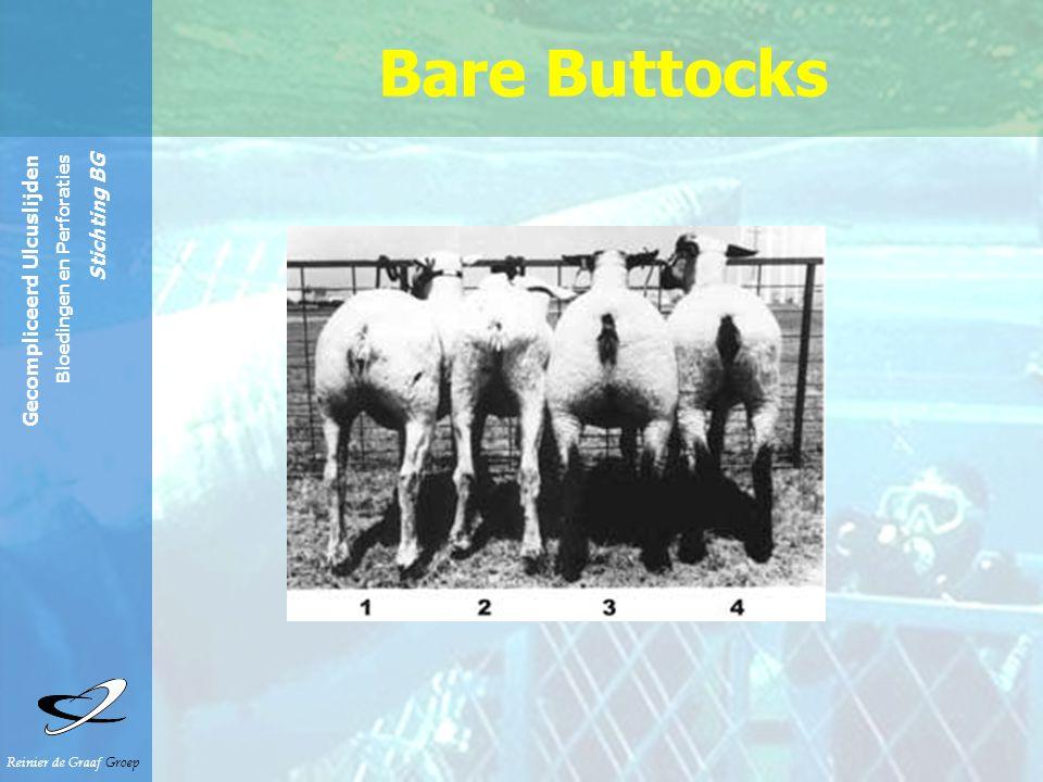 Reinier de Graaf Groep Gecompliceerd Ulcuslijden Bloedingen en Perforaties Stichting BG Bare Buttocks