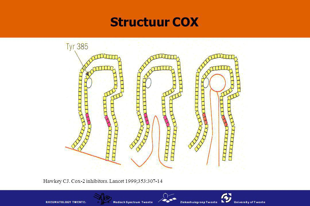Hawkey CJ. Cox-2 inhibitors. Lancet 1999;353:307-14 Structuur COX