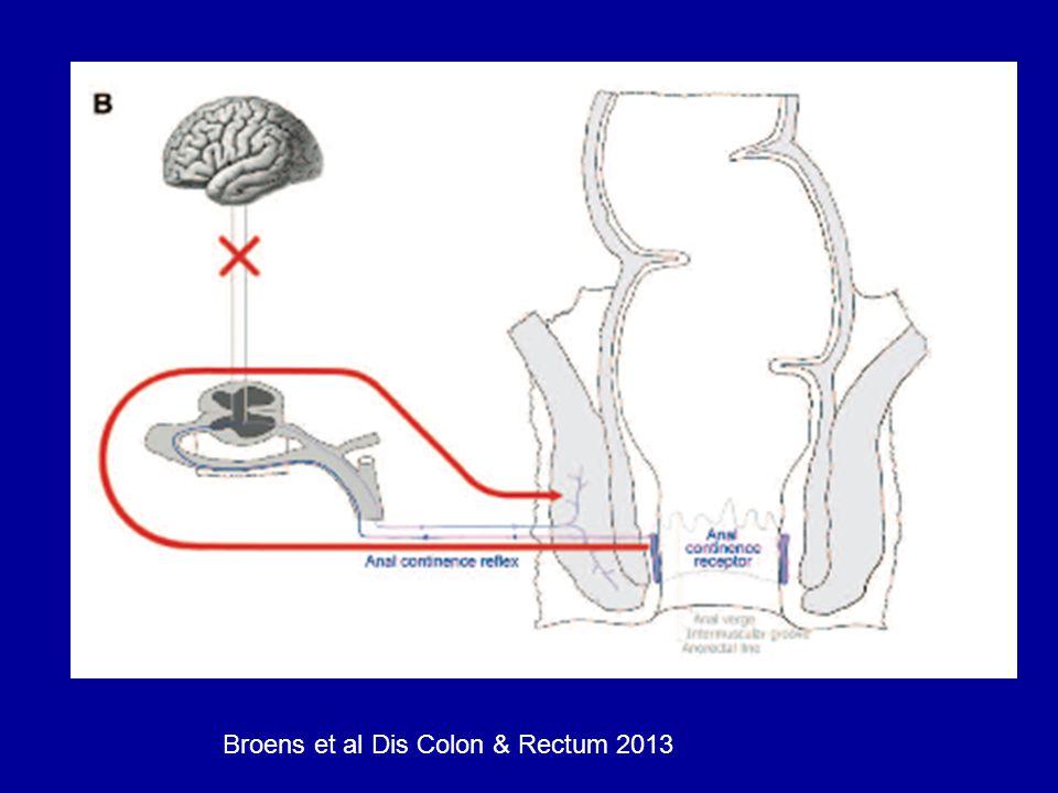 Broens et al Dis Colon & Rectum 2013