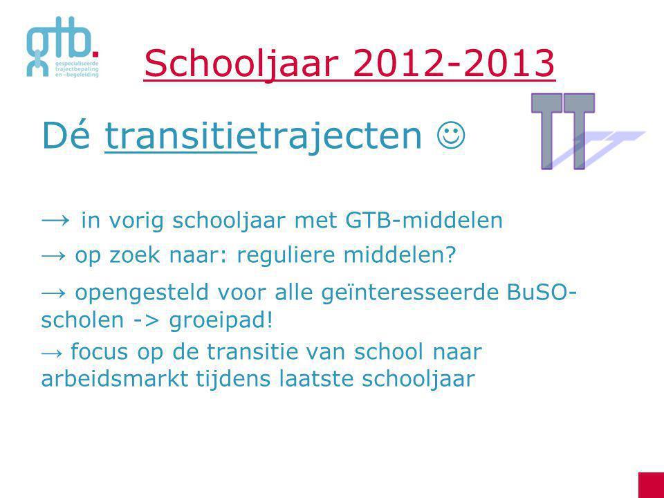 Schooljaar 2012-2013 Dé transitietrajecten → in vorig schooljaar met GTB-middelen → op zoek naar: reguliere middelen? → opengesteld voor alle geïntere