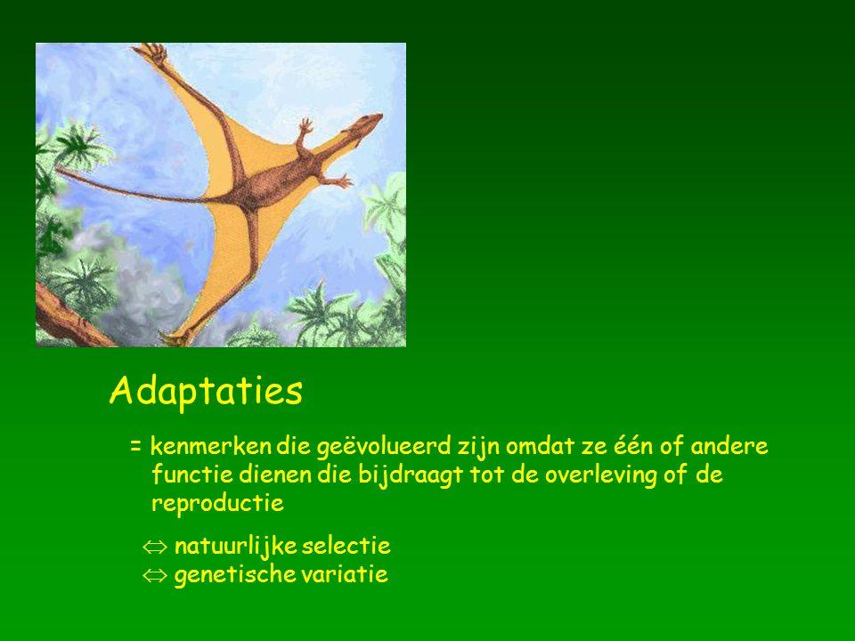 Adaptaties = kenmerken die geëvolueerd zijn omdat ze één of andere functie dienen die bijdraagt tot de overleving of de reproductie  natuurlijke sele