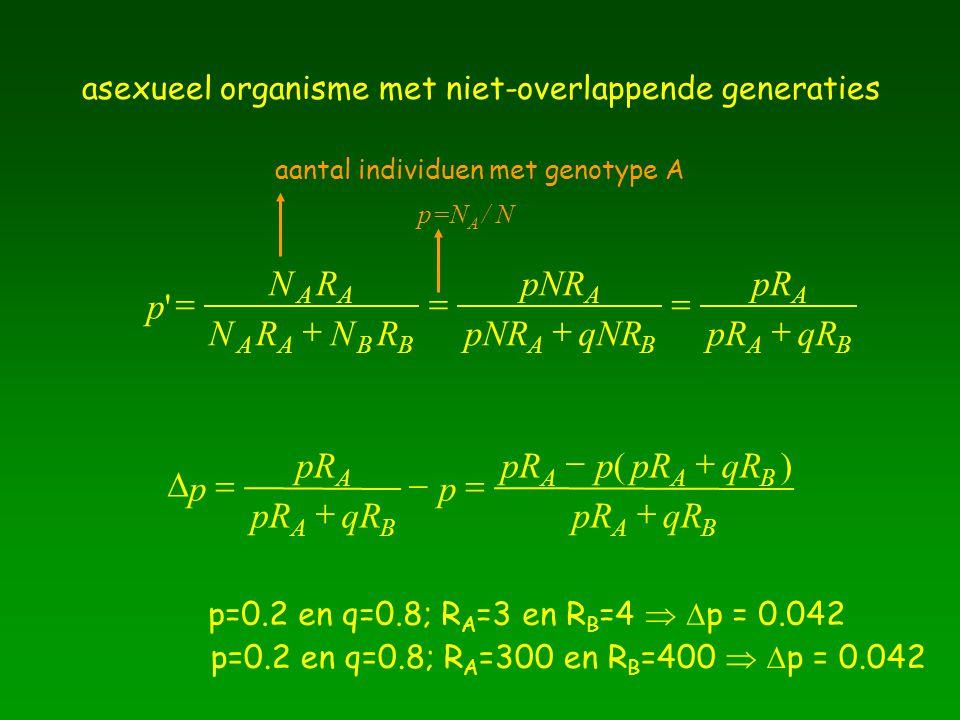 asexueel organisme met niet-overlappende generaties p NR NRNR AA AABB '   pNR qNR A AB   pR qR A AB    p pR qR p A AB    pRp qR pRqR AAB AB