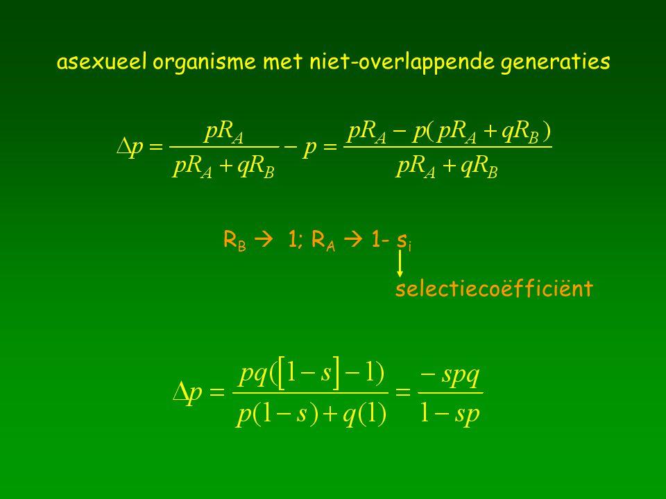 asexueel organisme met niet-overlappende generaties R B  1; R A  1- s i selectiecoëfficiënt