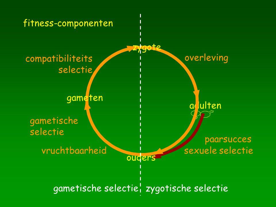 adulten gameten overleving paarsucces sexuele selectievruchtbaarheid gametische selectie compatibiliteits selectie zygote ouders zygotische selectie g
