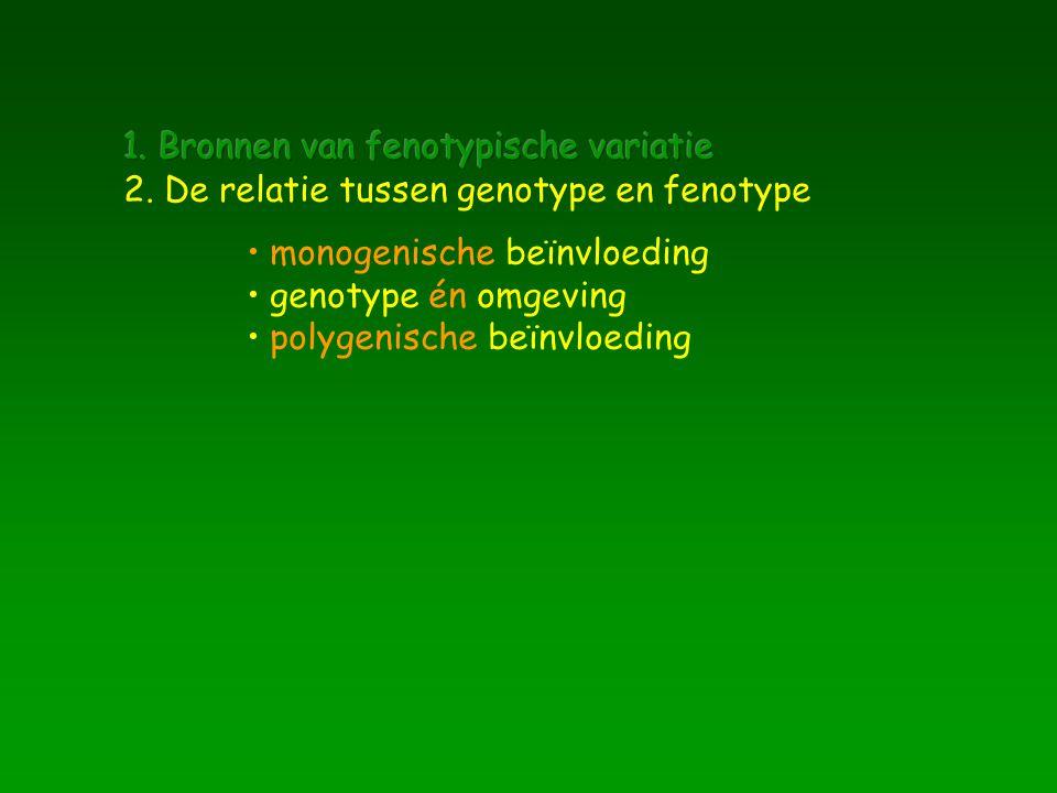 monogenische beïnvloeding genotype én omgeving polygenische beïnvloeding