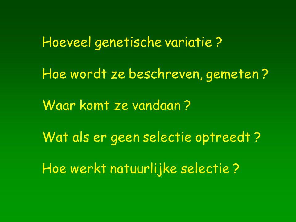 Hoeveel genetische variatie ? Hoe wordt ze beschreven, gemeten ? Waar komt ze vandaan ? Wat als er geen selectie optreedt ? Hoe werkt natuurlijke sele