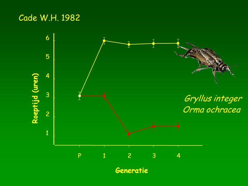 Generatie P1234 Roeptijd (uren) 1 2 3 4 5 6 Cade W.H. 1982 Gryllus integer Orma ochracea