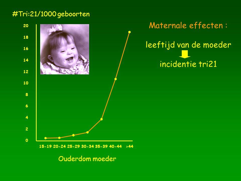 Maternale effecten : leeftijd van de moeder incidentie tri21 Ouderdom moeder 15-1920-2425-2930-3435-3940-44>44 0 2 4 6 8 10 12 14 16 18 20 #Tri:21/100