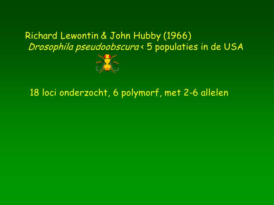 Richard Lewontin & John Hubby (1966) Drosophila pseudoobscura < 5 populaties in de USA 18 loci onderzocht, 6 polymorf, met 2-6 allelen