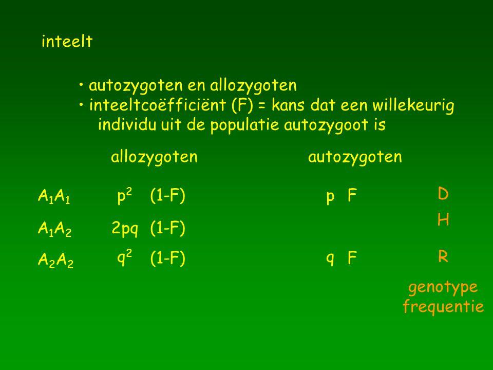 inteelt autozygoten en allozygoten inteeltcoëfficiënt (F) = kans dat een willekeurig individu uit de populatie autozygoot is allozygotenautozygoten A1