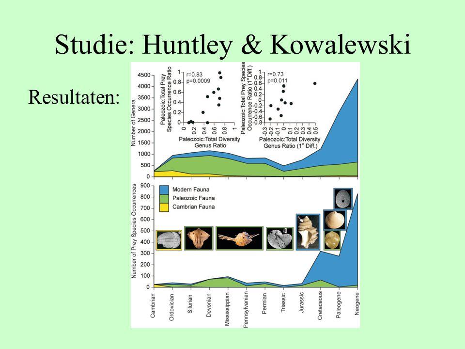 Studie: Huntley & Kowalewski Resultaten: