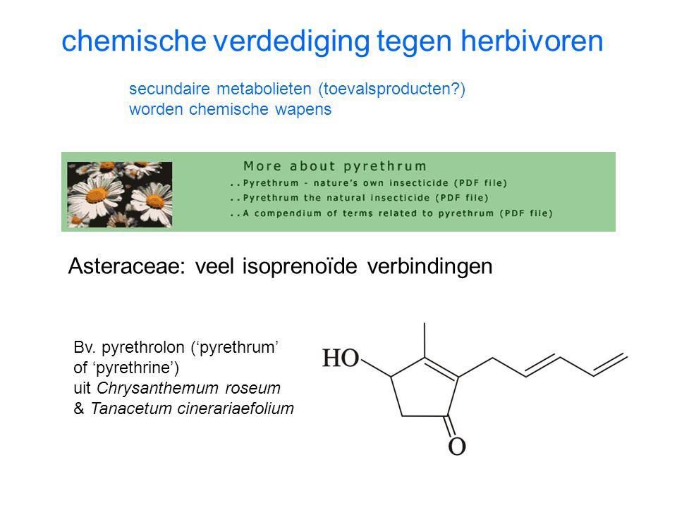 chemische verdediging tegen herbivoren secundaire metabolieten (toevalsproducten?) worden chemische wapens Bv.