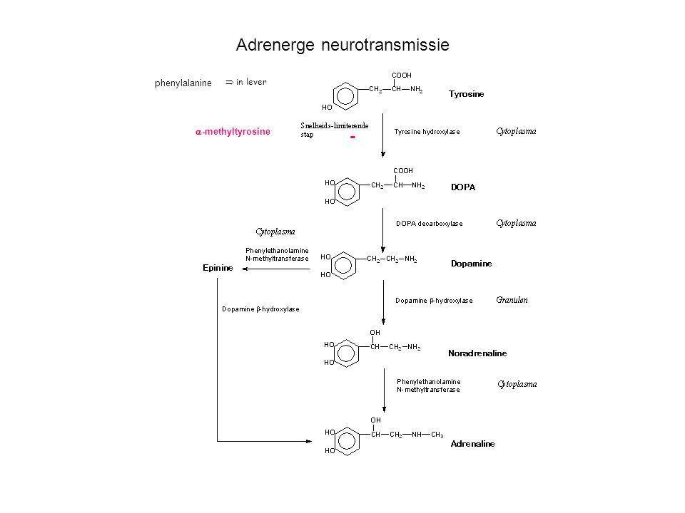 Adrenerge neurotransmissie  -methyltyrosine -  in lever phenylalanine