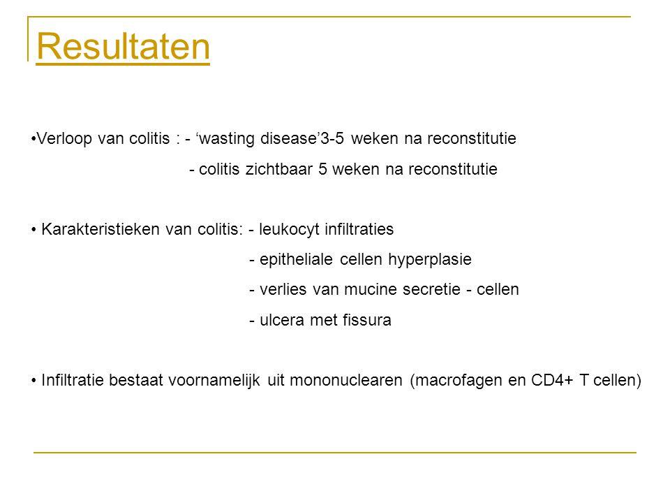 Resultaten Verloop van colitis : - 'wasting disease'3-5 weken na reconstitutie - colitis zichtbaar 5 weken na reconstitutie Karakteristieken van colit