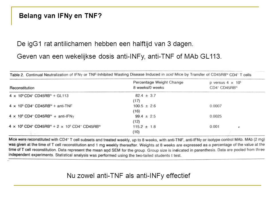 Belang van IFNy en TNF? De igG1 rat antilichamen hebben een halftijd van 3 dagen. Geven van een wekelijkse dosis anti-INFy, anti-TNF of MAb GL113. Nu